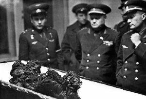 Komarov's remains